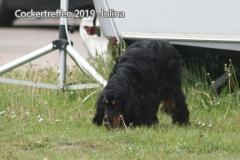 cockertreffen2019-12