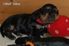 Julina